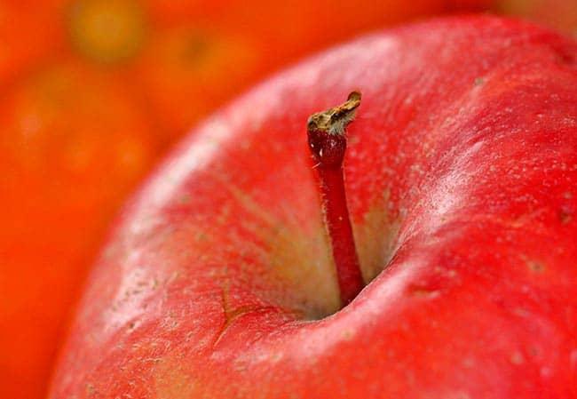 mermelada de manzanas receta