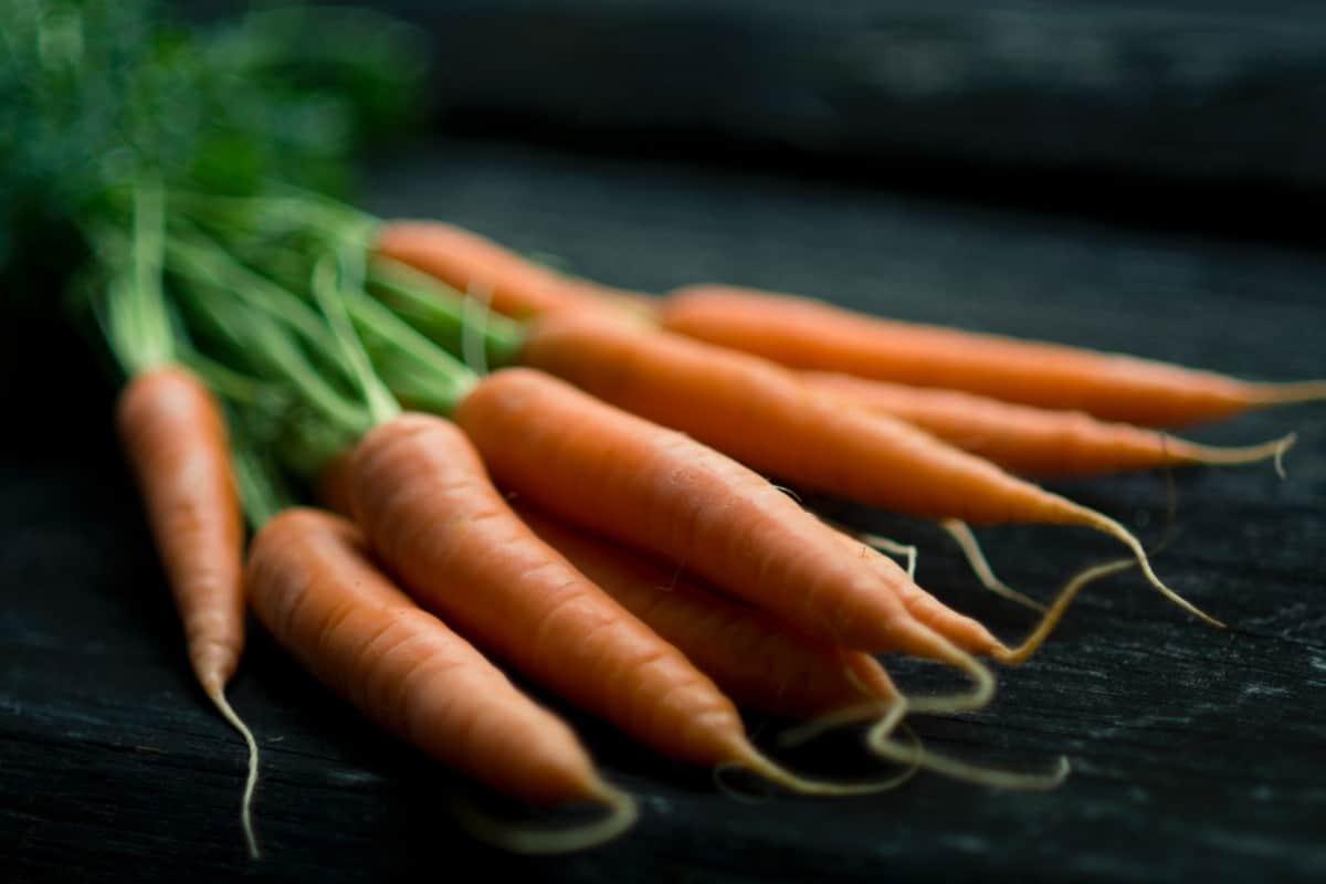 sauce aux carottes